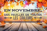 Menus Restaurant scolaire Novembre 2020